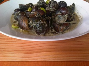escargot recipe_