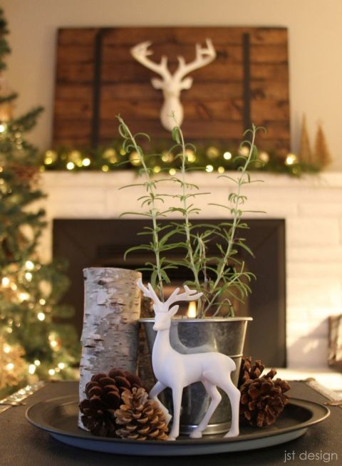 Beautiful christmas centerpiece ideas cathy for Christmas table decorations to make at home